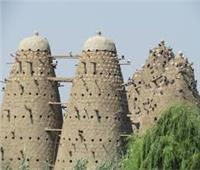 «الفيوم» أول مدينة تستخدم الحمام الزاجل كـ«بريد» في العصر البطلمي