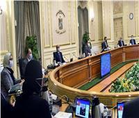 إنفوجراف| «تخصيص 100مليار جنيه وخفض الفائدة».. أبرز استعدادات الحكومة لأزمة كورونا