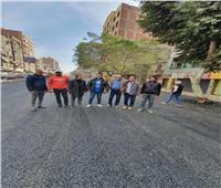 توسعة ورصف وتشجير شارع الوحدة في إمبابة