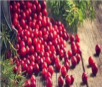 فوائد «التوت البري».. أبرزها تقوية المناعة وحرق الدهون