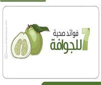 إنفوجراف  7 فوائد صحية للجوافة .. تعرف عليها