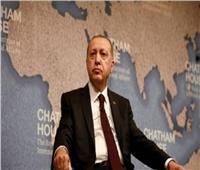 «الدمار الشامل».. مشروع أردوغان الجديد لغرب أفريقيا