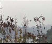 الصين تلجأ لسلاح طائر لإنقاذ المواطنين من الدبابير
