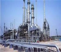 سعد هلال: وزارة البترول تدعم استمرار النهوض بصناعة الكيماويات