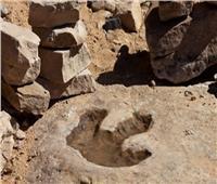 اكتشاف آثار أقدام ديناصورات عمرها 176 مليون سنة في الصين