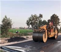 لمنع تكرار الحوادث.. رصف طريق «زفتي المحلة» في الغربية