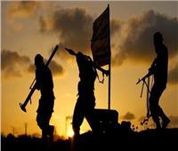 باحث في شئون الجماعات الإرهابية يكشف التنسيق المصري العراقي لمواجهة داعش