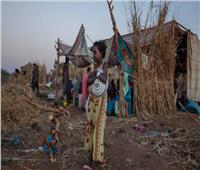 الأمم المتحدة تسلم مساعدات إنسانية لـ«تيجراي»
