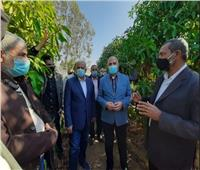 وزير الموارد المائية: الري الحديث يزيد إنتاجية الزراعات 50%