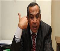 برلماني: تصريحات بريطانيا عن مصر أبلغ رد على البرلمان الأوروبي 