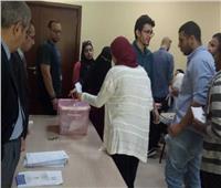 اليوم.. انتخاب أمناء اللجان ومساعديهم في الجامعات