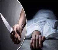 29 ديسمبر.. أولى جلسات محاكمة المتهم بقتل شقيقين بالشرابية