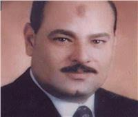 «أستاذ بإعلام الأزهر» يستنكر إهمال الكثير للغة العربية