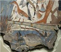 الأسماك ضمن غذاء المحاربين في مصر القديمة