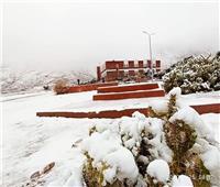 جبال سانت كاترين تتزين بالثوب الأبيض | صور