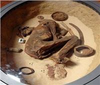 كل ما لا تعرفه عن المنظومة العلمية لأعمال الحفائر الأثرية.. صور