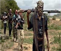 مقتل 7 أشخاص في هجوم لـ«بوكو حرام» على قرية في شمال نيجيريا