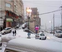 سيارات تنزلق وتتحطم بسبب الثلوج في تركيا.. فيديو