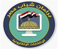 «الرياضة» تعلن إجراءات التصويت الإلكتروني ببرلمان شباب مصر