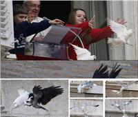 حقيقة صورة الهجوم على«حمامتي سلام» بابا الفاتيكان