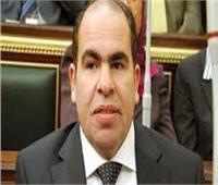 الهضيبي: «حياة كريمة» تستهدف رفع المعاناة اليومية عن المواطنين