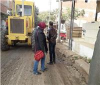 رفع 80 طن قمامة من قرى المنوفية.. صور
