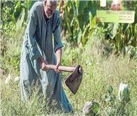 حصاد 2020| إطلاق منظومة كارت الفلاح الذكي