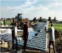 إزالة 7 حالات تعدي على الأراضى الزراعية بـ«البحيرة»