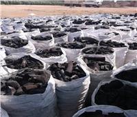 المحافظة و«البيئة» تلاحقان مكامير الفحم بالغربية.. وأصحابها: نطالب بالتقنين