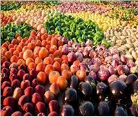 «القصير»: صادرات مصر الزراعية تتجاوز الـ 5 ملايين طن بنهاية العام