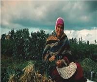 «أم كريم».. قصة كفاح سيدة ريفية وثقتها الكاميرا
