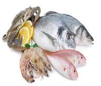 حالة من التباين في أسعار السمك بسوق العبور اليوم 3 يناير