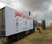 متحدث صندوق «تحيا مصر»: تخصيص دعم مالي لتوفير لقاحات كورونا