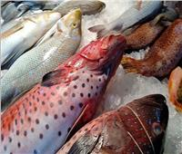 أسعار الأسماك في سوق العبور اليوم 4 يناير