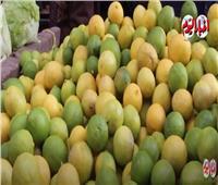 بعد ارتفاع أسعاره .. الليمون غلب الطماطم في «الجنون» | فيديو