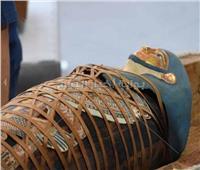فيديوهات تفصيلية لاكتشافات أثرية في سقارة.. فيديو