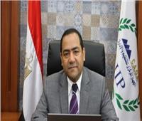 الشيخ: انتهاء تدريب 19 ألفا و 568 موظفا من المرشحين للانتقال إلى العاصمة الإدارية