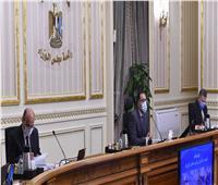 «غرامات كورونا و الثانوية العامة».. الحكومة ترصد 8 شائعات مع بداية عام 2021