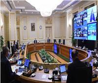 «قرارات هامة»| الحصاد الأسبوعي لمجلس الوزراء في أول أسبوع 2021.. إنفوجراف