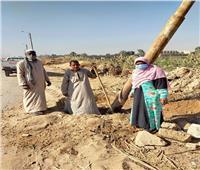 تعديل أعمدة الإنارة بقرية «عنيبة» بأسوان