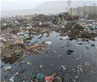 وسط استغاثة الأهالي| «أكوام القمامة» تحاصر قرية البرشا في المنيا