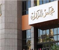الإدارية العليا تنظر طعن الحكومة على حكم تنظيم الرؤية