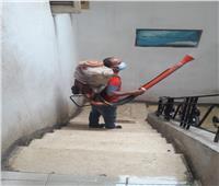 محافظ الغربية يتابع أعمال النظافة بحي ثان طنطا