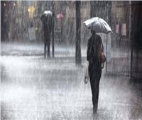 الحكومة: 11 ألف شكوى بسبب سوء حالة الطقس