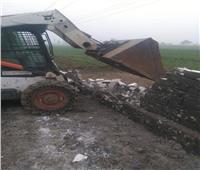 إزالة 8 حالات تعد على الأراضي الزراعية بالمنيا| صور