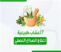 7 أعشاب طبيعية لعلاج الصداع النصفي