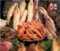 فيديو | أسعار خيرات البحر من سوق السمك الشعبي في إمبابة