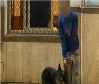 «متنمر» يروع مهتز نفسيا بكلب شرس في الإسكندرية