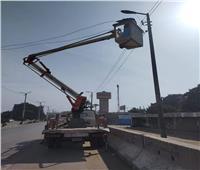 حملات نظافة مكثفة وصيانة كشافات الطرق بالمنيا | صور