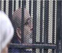 اليوم| الحكم في طعن «شقيق يوسف بطرس غالي» على سجنه وتغريمه